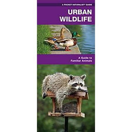 Life Urban Envelope - Urban Wildlife - eBook