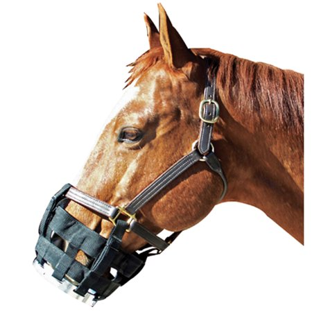 Best Friend Equine-Free-to-eat Cribbing Muzzle- Black Large