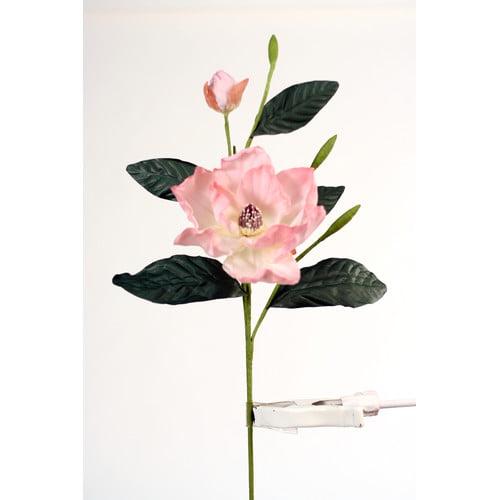 Distinctive Designs DIY Flower Magnolia Grandiflora (Set of 6)