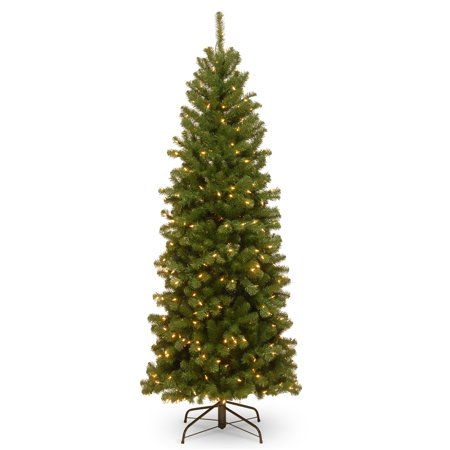 6' North Valley Spruce Pencil Slim Tree with Clear Lights - Japanese Pencil Tree
