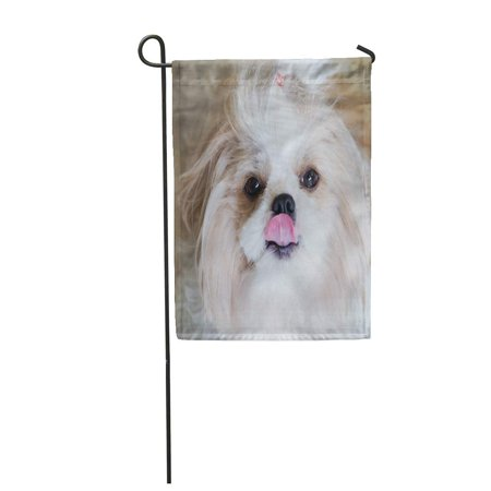 NUDECOR Dog Shih Tzu Sitting Floor Panting 7 Month White Garden Flag Decorative Flag House Banner 28x40 inch - image 1 of 1