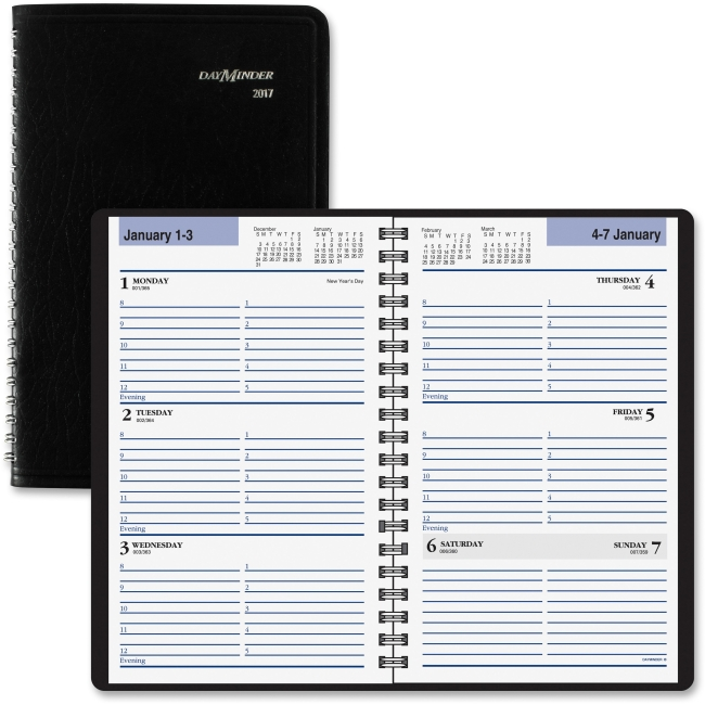 At-A-Glance DayMinder Weekly Appointment Book - AAGSK4100