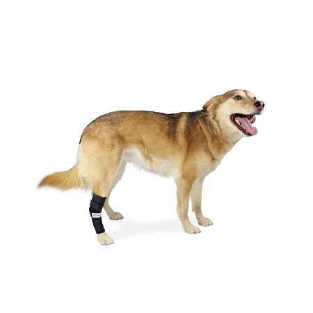 Extended Hock Support for Dogs Rear Leg Helps Canine