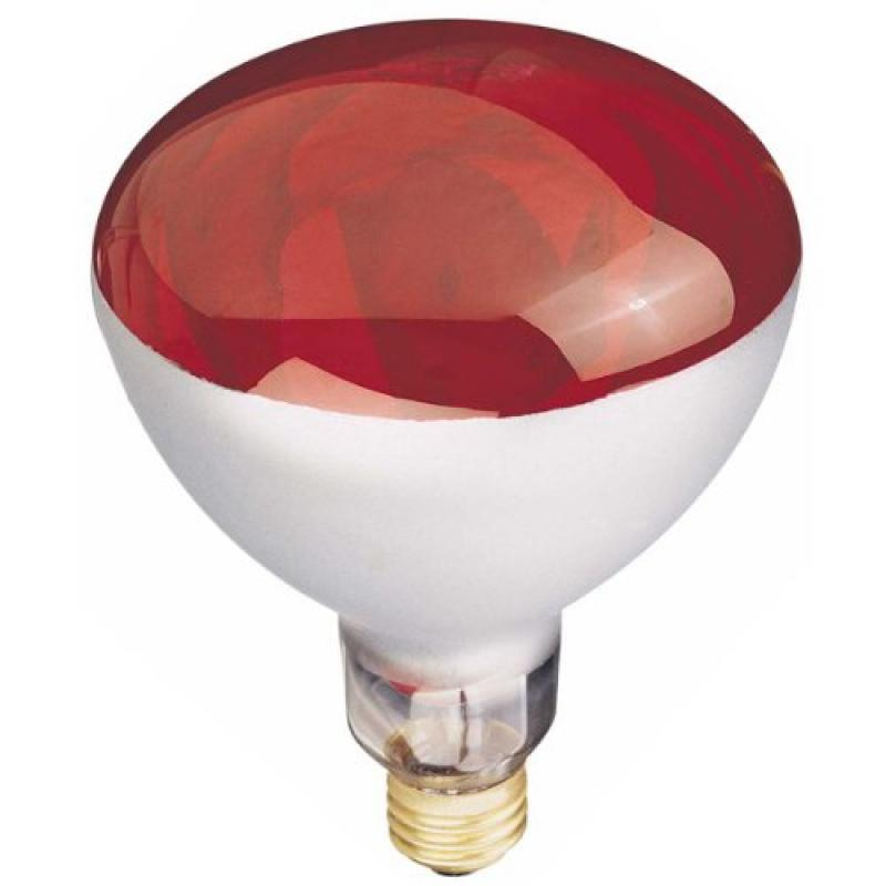 Globe Electric  03917  Bulbs  Incandescent  ;Red