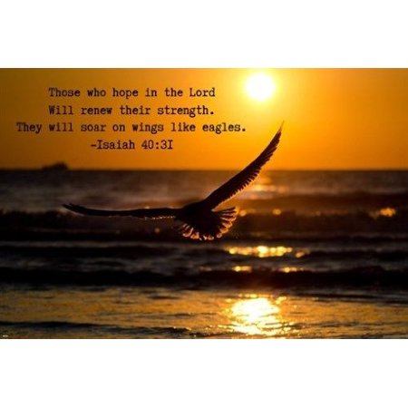 Isaiah 40:31 Biblical Verse Inspirational Poster 24X36 Hope In The Lord