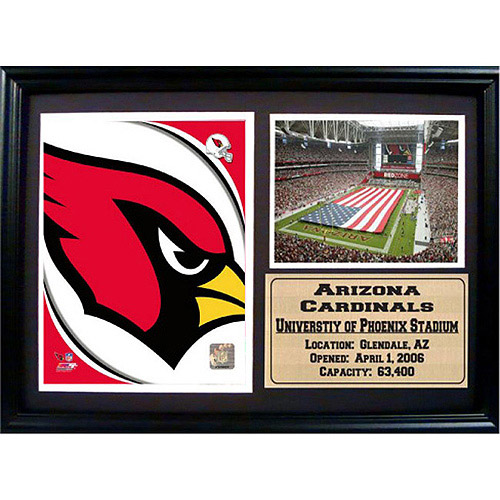 NFL Arizona Cardinals Photo Stat Frame, 12x18