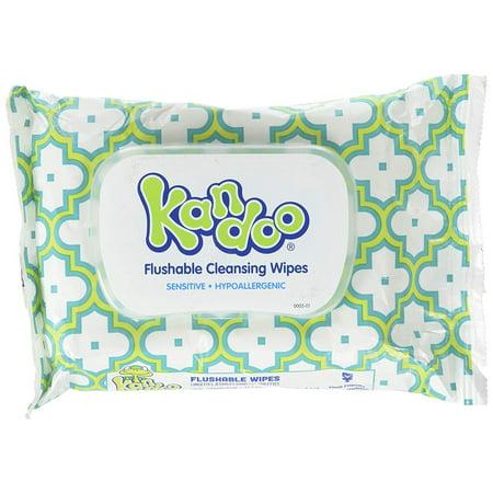 Kandoo Flushable Cleaning Wipes, Sensitive, 42 Wipes
