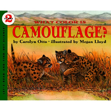 What Color Is Camouflage? : An Incredible Story of Hope, Triumph, and Everyday