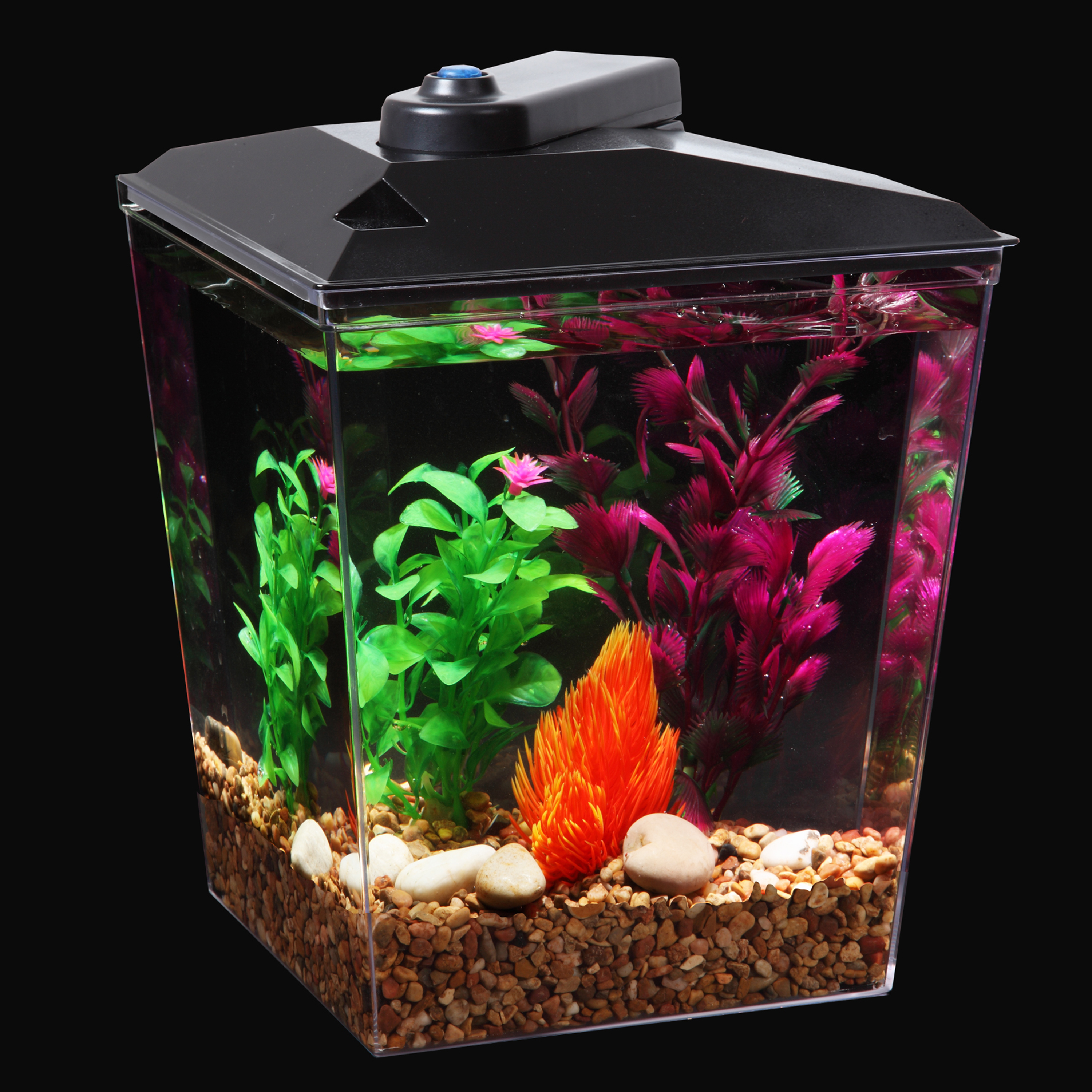 Bottom feeder for guppy tank wiring diagrams repair for One gallon fish tank