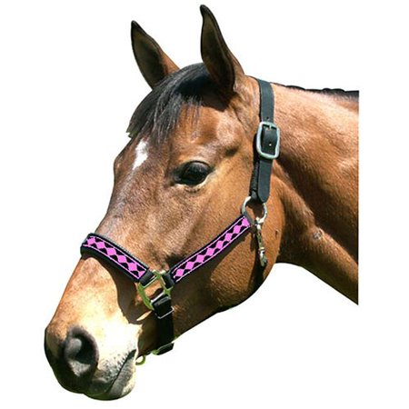 Intrepid International 126001GD Full Horse Halter Leather Crown Padded Nose, Black & Gold