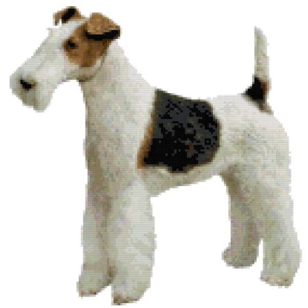Wire Haired Fox Terrier Dog Counted Cross Stitch Pattern