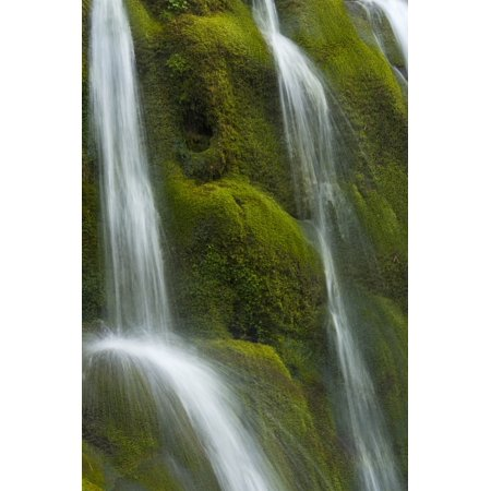Small Waterfall Over Mossy Stones In Gleann Enich Near Aviemore Highlands Scotland Uk