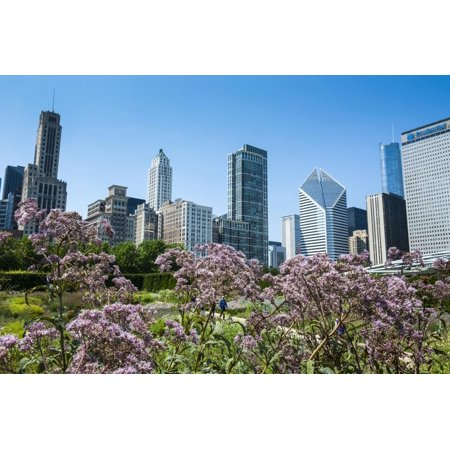 Colorful Flowers in the Millennium Park with the Skyline of Chicago, Illinois, Usa Print Wall Art By Michael Runkel ()