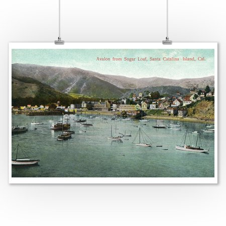 Santa Catalina Island, California - View of Avalon Bay from Sugar Loaf (9x12 Art Print, Wall Decor Travel Poster)