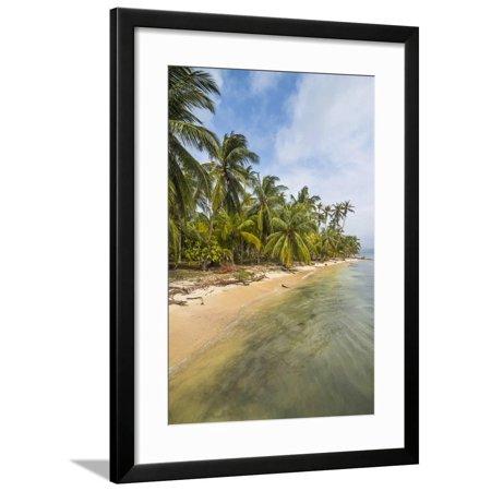 Beautiful palm fringed beach, Achutupu, San Blas Islands, Kuna Yala, Panama, Central America Framed Print Wall Art By Michael Runkel