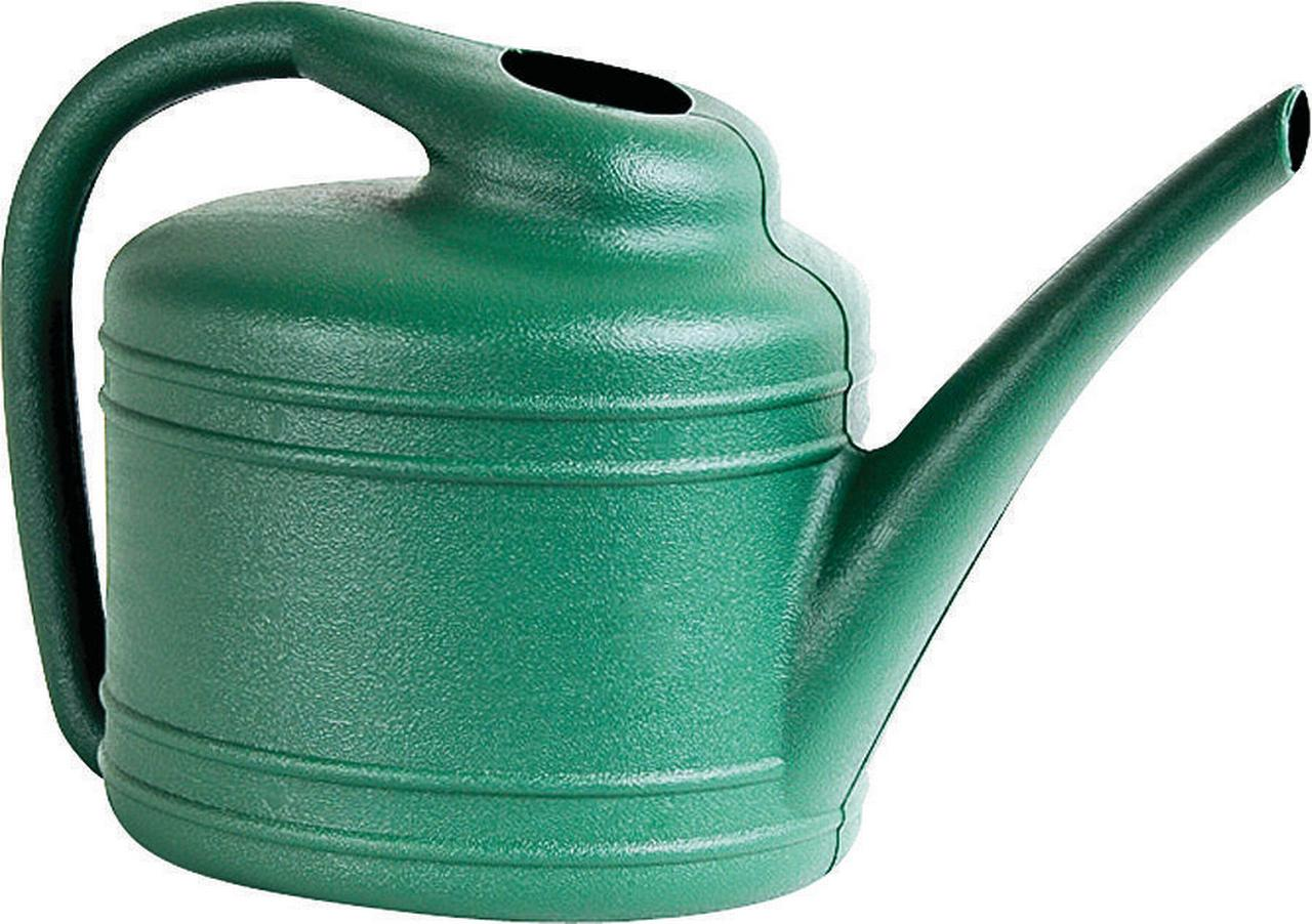Southern Patio WC4012FE Watering Can, 1 gal, 14 in Dia X 8-1 2 in H, Long, Plastic, Green by Ames True Temper