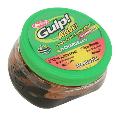Berkley Gulp! Alive! Minnow Jumbo Leech Assortment Soft Bait Various Lengths and Color