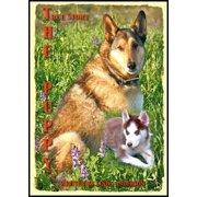 The Puppy A True Story - eBook