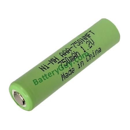 BatteryGuy AAA-750NMFT 1.20V 750mah Rechargeable Nickel Metal Hydride