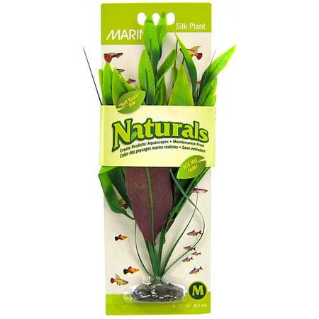 Natural Medium Green (Marina Naturals Green Pickerel Silk Plant, Medium)