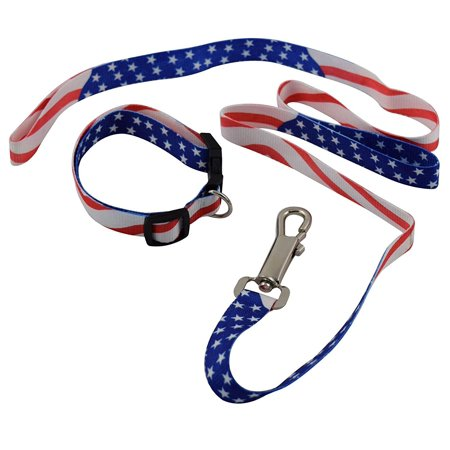 USA Patriotic American Military Memorial Labor Day Dog Collar and Leash - Patriotic Dog
