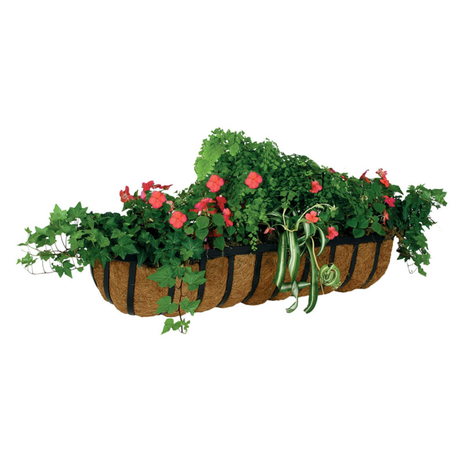 """Smart Garden Forge Coco Wall Manger Liner 20/"""""""