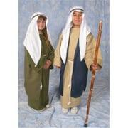 Alexander Costume 11-275 Biblical Townschild Costume, Medium