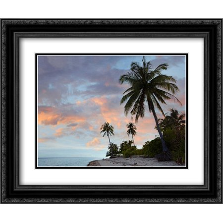 Coconut Palm trees, Pamilacan Island, Bohol Island, Philippines 2x Matted 24x20 Black Ornate Framed Art Print by Fitzharris, Tim (Antique Palm Frame Art Print)