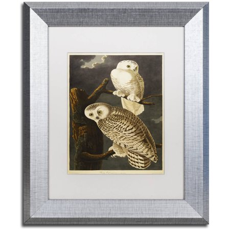 "Trademark Fine Art ""Snowy Owl"" Canvas Art by John James Audubon White Matte, Silver Frame"