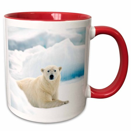 Ht Enterprises Polar Ice (3dRose Polar bear in Norway laying on the summer pack ice. - Two Tone Red Mug, 11-ounce)