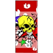Mightyskins Protective Vinyl Skin Decal Cover for Apple iPod Nano 4G (4th Generation) wrap sticker skins - Star and Skull