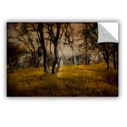 ArtWall Meander 2 Removable Wall Mural