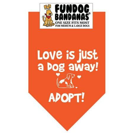 Fun Dog Bandana - L'amour est