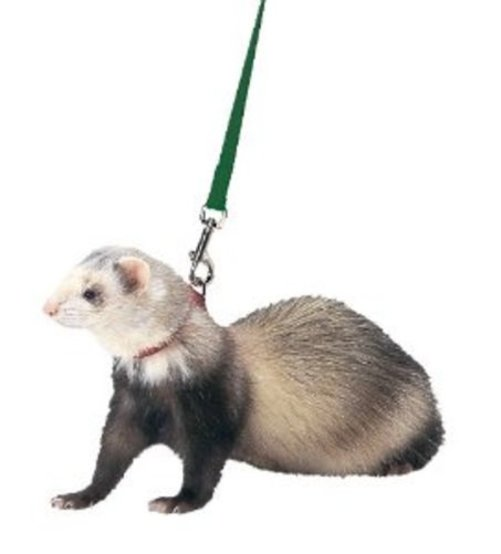 MARSHALL PET PRODUCTS FERRET HARNESS/LEAD SET HUNTER