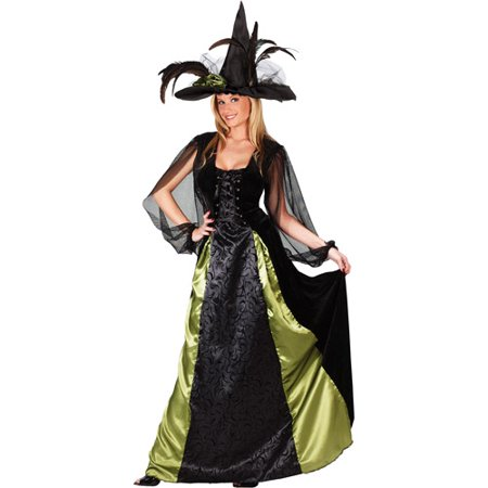 Goth Maiden Witch Adult Halloween Costume](Adult Witches Costume)