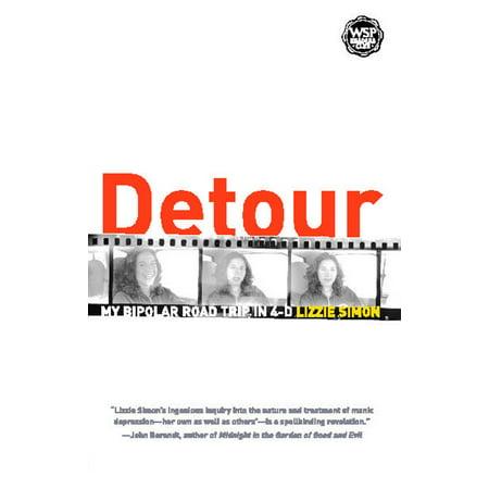 Detour : My Bipolar Road Trip in 4-D
