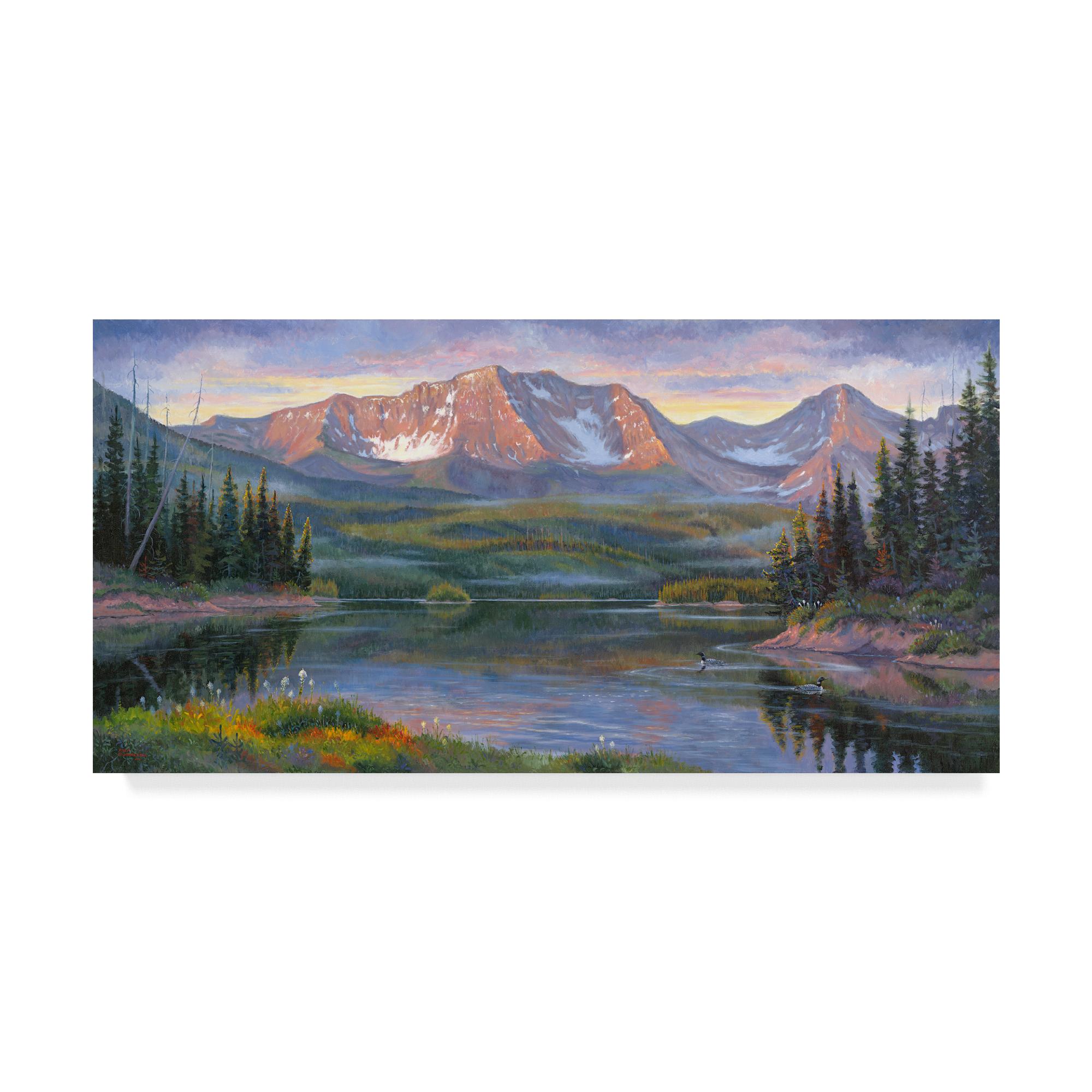 Trademark Fine Art 'Great Northern' Canvas Art by Allen Jimmerson