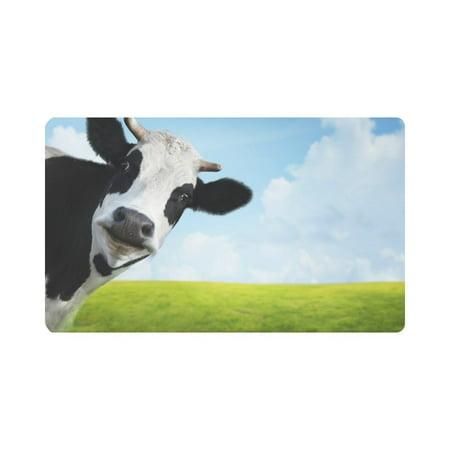 MKHERT Funny Animal Cow Cattle on Green Summer Meadow Doormat Rug Home Decor Floor Mat Bath Mat 30x18