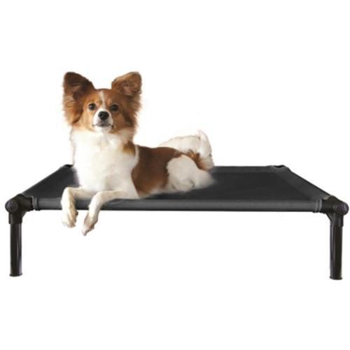 Starmark Pet Starmark Nylon Fabric Dog Zone Pro-Training ...