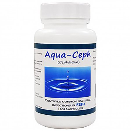 Aqua ceph 250mg cephalexin 100 count fish antibiotic for Fish antibiotics walmart