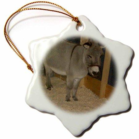 3dRose Christmas Donkey, Snowflake Ornament, Porcelain, 3-inch
