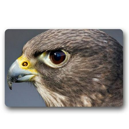 WinHome Hawk Close Up Doormat Floor Mats Rugs Outdoors/Indoor Doormat Size 23.6x15.7 inches