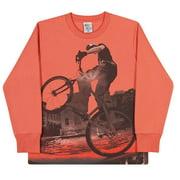 Toddler Boys Sweatshirt Long Sleeve Shirt Winter Pulla Bulla Size 2-4 Years