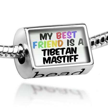 Bead My best Friend a Tibetan Mastiff Dog from China Charm Fits All European