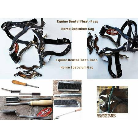 Horse Veterinary Tool EQUINE DENTAL FLOAT RASP HORSE MOUTH SPECULUM GAG 984770