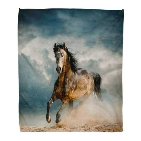 ASHLEIGH Throw Blanket 58x80 Inches Orange Horse Wild Stallion in Dust Gray Run Freedom Speed Gallop Power Free Black Warm Flannel Soft Blanket for Couch Sofa Bed