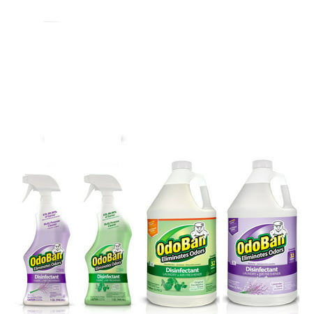 OdoBan Disinfectant Odor Eliminator Ready-to-Use 32oz Spray Bottle and 1 Gal Concentrate, Original Eucalyptus Scent, Plus Ready-to-Use 32oz Spray Bottle and 1 Gal Concentrate, Lavender - Plus Concentrate