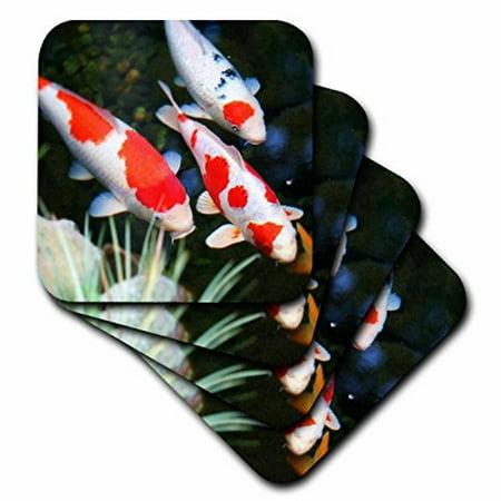 3dRose Japanese orange n White Koi Fish, Ceramic Tile Coasters, set of 4
