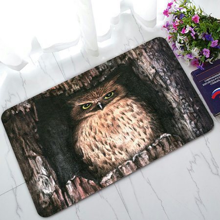 PHFZK Watercolor Animal Doormat, Cool Owl Doormat Outdoors/Indoor Doormat Home Floor Mats Rugs Size 30x18 inches