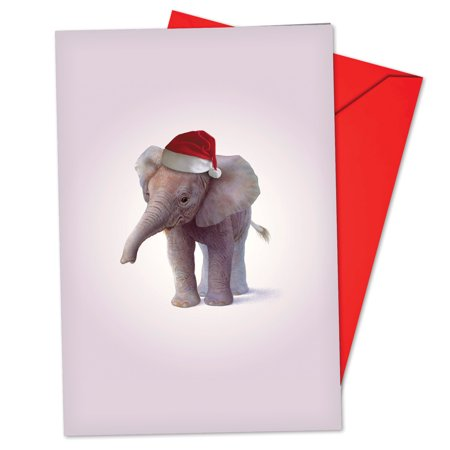 'B6726DXSG Zoo Babies Christmas Cards' Box Set of 12 Humor Merry Christmas Cards with Envelopes by